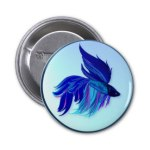 betta splendens pins